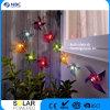 linterna solar de la cadena LED de la talla de 16 (d) X16 (h) cm