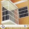 Ventana de aluminio recubierto de polvo de Guangdong Grill/protector de la ventana