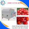 Macchina automatica piena della puntinatura della ciliegia della frutta dell'acciaio inossidabile