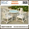 Meubles extérieurs en aluminium confortables de rotin de jardin (SC-B8959)