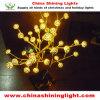 セリウムUL SAA BS標準LEDのクリスマスの照明