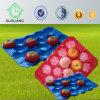China-Hersteller-warmgeformte perforierte Blase schiebt Tellersegment für frische Frucht-Verpackungsindustrie-Gebrauch ein