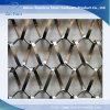 Rete metallica decorativa di architettura popolare dell'acciaio inossidabile