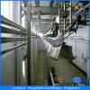 Верхнее продавая оборудование Slaughtering оборудования Slaughtering свиньи