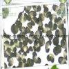 소나무 꽃가루 추출, 건강식