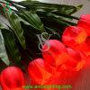 크리스마스 훈장을%s 인공적인 LED 꽃 빛