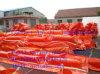 PVCオイルフェンス、PVC固体オイルの包含ブーム