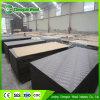 Álamo / abedul / madera contrachapada marina Core / Encofrado de madera contrachapada / Film Contrachapado con la Construcción (HB001)