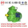 GOST Y2 Elektromotor Wechselstrommotor-asynchroner Bewegungsinduktions-Motor