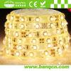 유연한 LED 지구 빛 SMD 3528 온난한 백색은 300 LEDs/M를 방수 처리한다