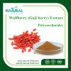 Polvere calda antinvecchiamento dell'estratto di Wolfberry di vendita