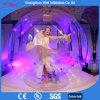 Sfera gonfiabile di esposizione della sfera gonfiabile di Dancing da vendere