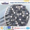 Barra rotonda della barra AISI 316 dell'acciaio inossidabile degli ss 304/piana trafilata a freddo