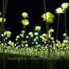 Decorações artificiais de flores de Natal com flores de LED