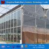 Facilement assemblés à Venlo serre agricole /PC/verre serre serre