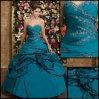 Vestito popolare da promenade/vestito da partito/vestito da Quinceanera (PD-137)