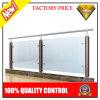 Roestvrij staal en het Houten Systeem van de Leuning van het Glas