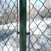 Загородка звена цепи PVC покрытая для животного