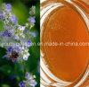 Top Miel, 100% Natrual Orgánica Salvaje Vervain / espinas / Vitex miel, sin antibióticos, sin plaguicidas, sin bacterias patógenas, Prolong Life, alimentos saludables