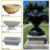 손으로 돌 정원 Flowerpot Granite Marble Planter Carved (YKFP-12)