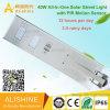 40watts PIR 운동 측정기를 가진 한세트 태양 LED 가로등