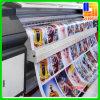 Banderas ULTRAVIOLETA de la impresión del vinilo a todo color con el tablero del PVC