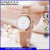 Relógio de senhoras ocasional de quartzo da cinta de couro da forma OEM/ODM (Wy-062C)