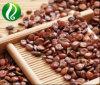 Jujube Jujubosides extracto en polvo de semillas de 2%, el 3%