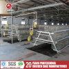 Migliori gabbie di strato di pollicultura di alta qualità