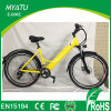 700c 250W Ciudad Electric Bike Señora Dutch Heren E Bike
