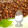 Suministrar el 98% en polvo ácido cafeico