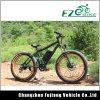 Verde litio potencia bicicleta eléctrica con batería de larga duración