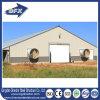 鋼鉄鶏の家禽の家のためのプレハブの養鶏場の建物