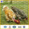 Мелкоячеистая сетка/Hex плетение (HPZS-1008)