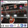 Оборудование конструкции дома птицефермы автоматическое для бройлеров и реактор-размножителов