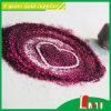 Usine colorée de poudre de scintillement d'approvisionnements d'école