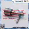 L017pbb Delphi geläufige Schienen-Pumpen-Düsen-Volvo-Spray-Düse L017pbd