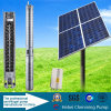 Brushless Structuur van de Pomp en de ZonnePomp van het Water van de Brandstof Zonne12V gelijkstroom van de Pomp van het Water voor Irrigatie