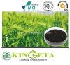 Fertilizzante organico dell'alto azoto