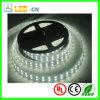 Oferta impermeable de la tira de RoHS SMD 5050 LED del CE