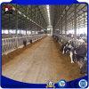 速いインストールおよび低価格プレハブの鋼鉄牛農場の家