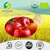 Het Poeder van het appelsap, het Onmiddellijke Poeder van het Vruchtesap, Poeder het Van uitstekende kwaliteit van het Gedroogd fruit van het Aroma van de Appel, het Poeder van het Gedroogd fruit van het Aroma van de Appel voor Sap, het Appelsap Van uitstekende kwaliteit
