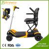 180W facili trasportano il mini motorino elettrico pieghevole di mobilità