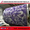 Bas prix de gros de la bobine d'acier galvanisé prélaqué/PPGI/PPGL