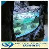 Подписи по кривой, акриловый аквариум кривой крутящего момента