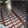 Le film de colle de WBP a fait face au contre-plaqué pour Buliding