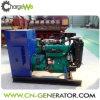 AC動物の排泄物からの三相出力タイプ50Hz/60Hz 30kwのBiogasの発電機