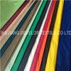 380t Nylon Fabric (DN2071)