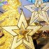 Im Freiendekoration kundenspezifische Ce/RoHS große im Freienweihnachtsstern-Dekoration