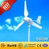 El imán permanente Coreless generador de turbina de viento-500W